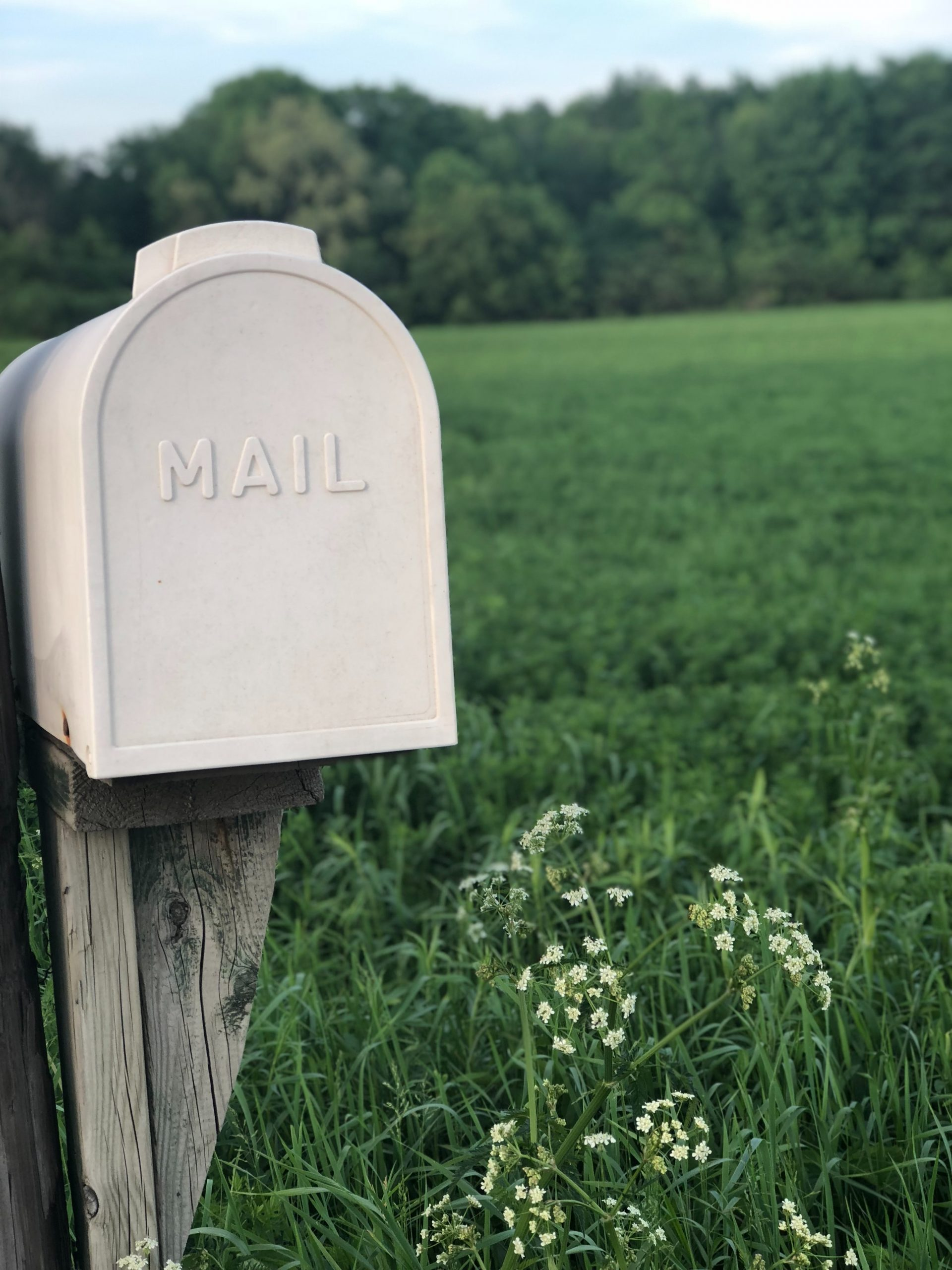Mailbox - Photo by Mikaela Wiedenhoff